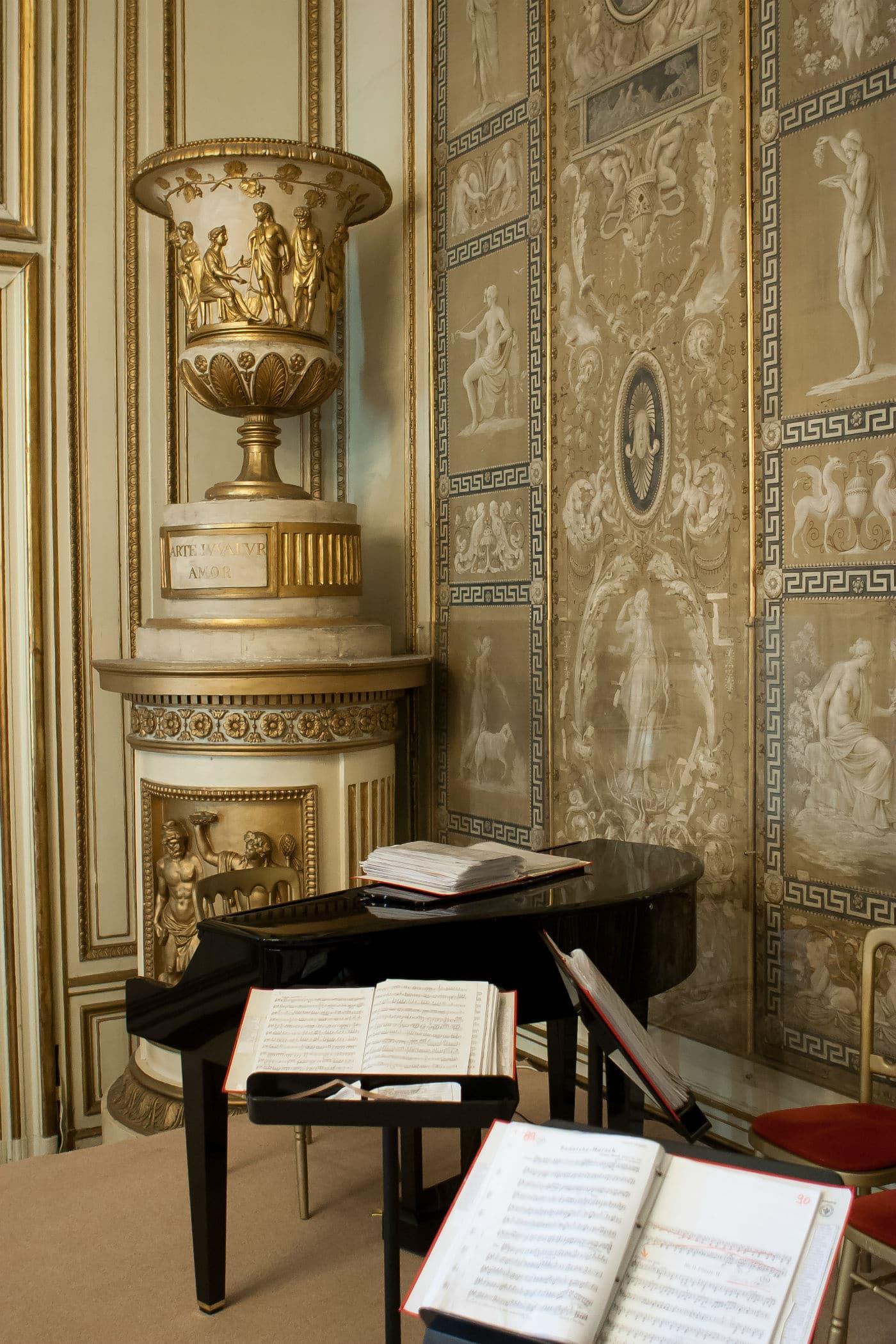 Palais Auersperg - Maria Theresien Saal -Exclusivkonzerte Wiener Residenzorchester