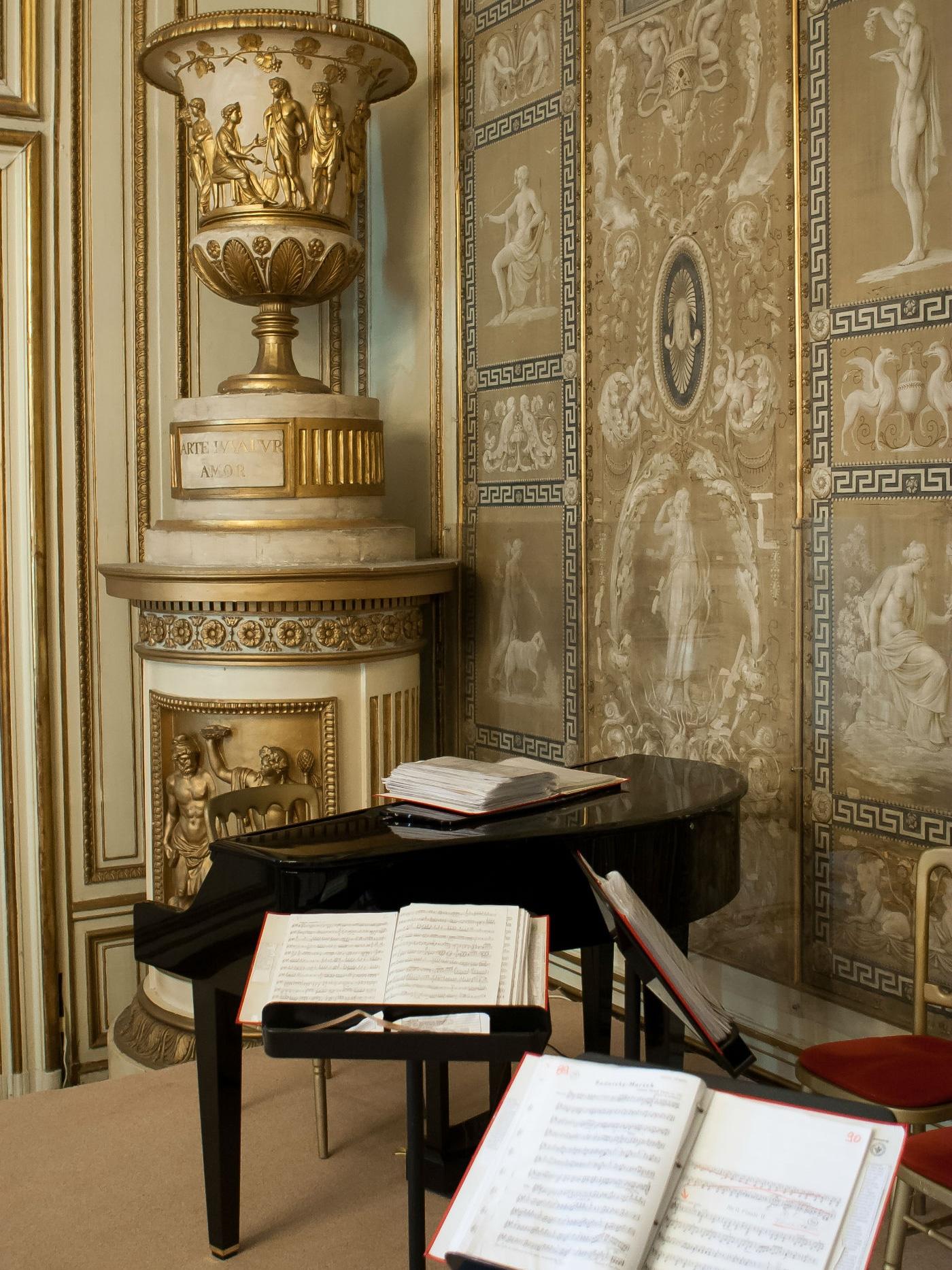 Maria-Theresien-Saal Palais Auersperg - Exklusiv Konzerte Wiener Residenzorchester
